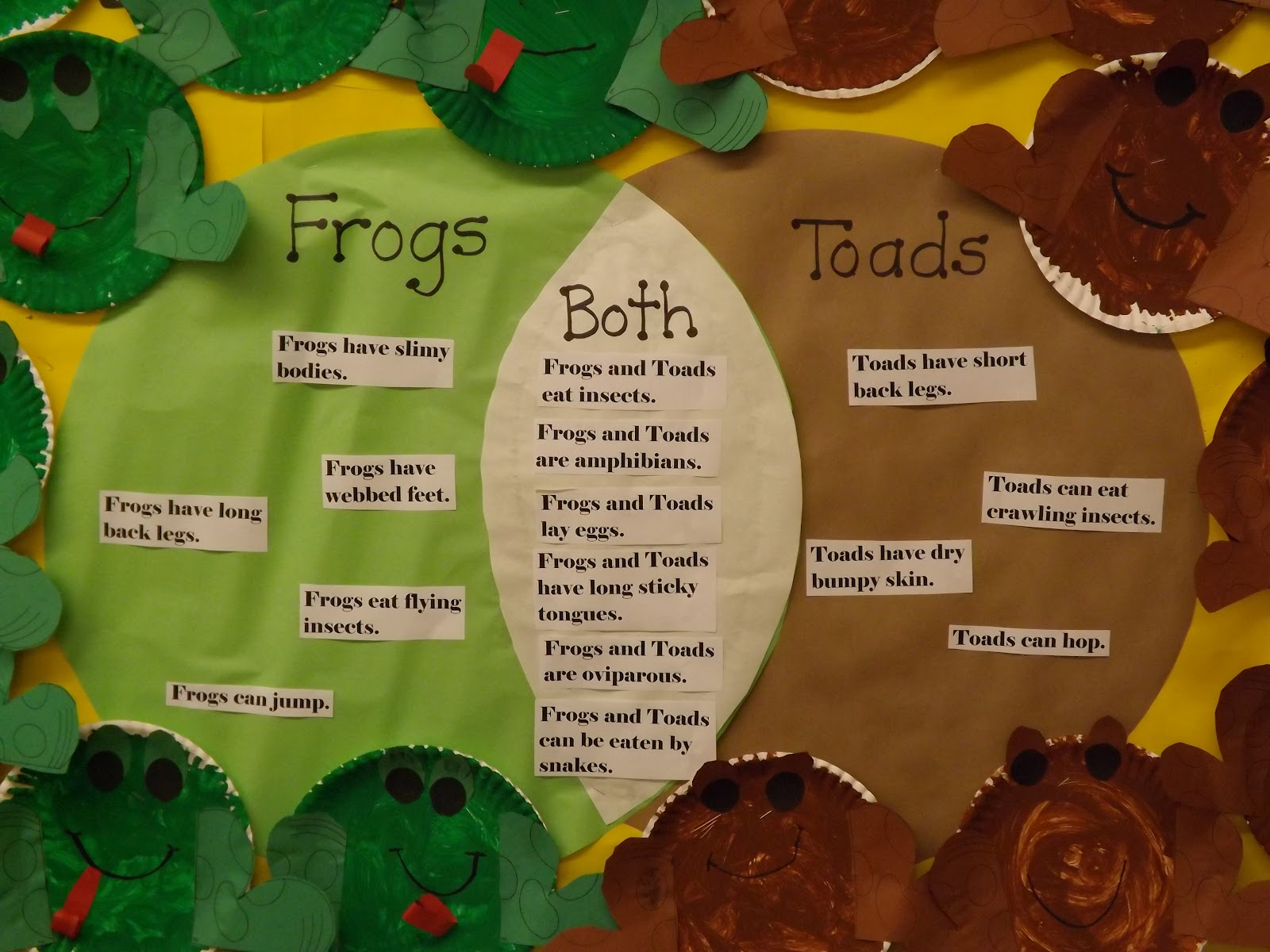 amphibians vs reptiles venn diagram wiring legend mrs vento 39s kindergarten and