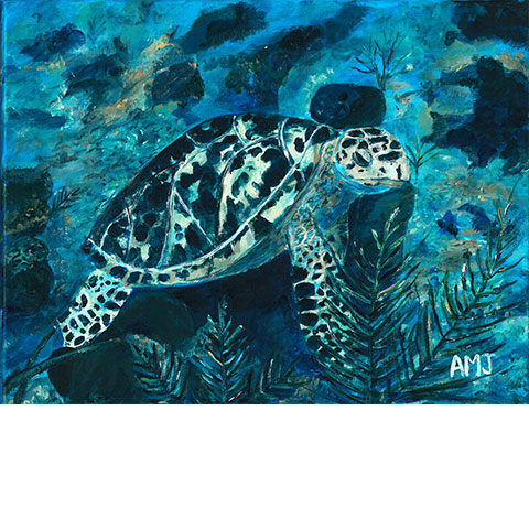 "Sea turtle, French Cay- 5""x7"" art card"