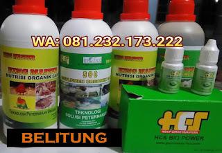 Jual SOC HCS, KINGMASTER, BIOPOWER Siap Kirim Belitung Tanjung Pandan