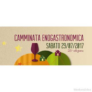 Camminata Enogastronomica tra le colline del Monferrato