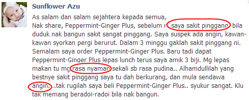 Testimoni Peppermint-Ginger Plus Shaklee