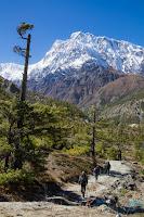 Annapurna 2 desde el Norte