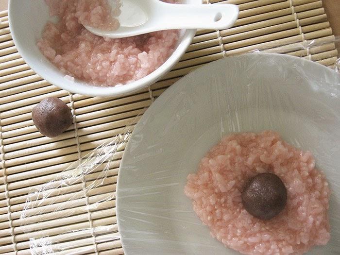 Fourrage sakura mochi anko