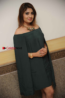 Kannada Actress Karunya Ram Stills in Strapless Green Short Dress at Eradu Kanasu Movie Press Meet  0008.jpg