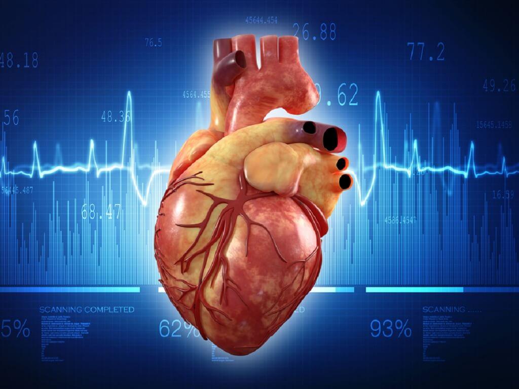 Punca Jantung Kencang