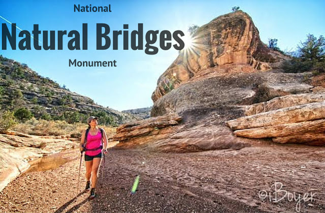 Natural Bridges National Monument, Utah. Loop Trail Natural Bridges