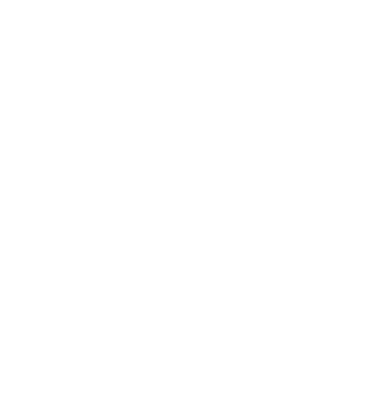 New York Models
