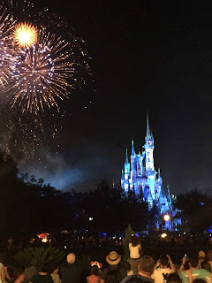 The Magic Kingdom Fireworks Happily Ever After