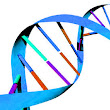 Genealogy Blog Party: DNA Discoveries