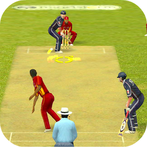 Cricket Heroes Game