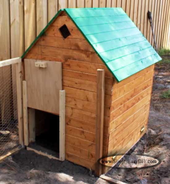 Urban Backyard Chicken Coop