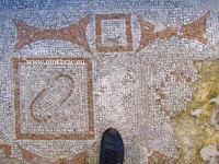 Ranokršćanska bazilika sv. Petar, Supetar, otok Brač slike
