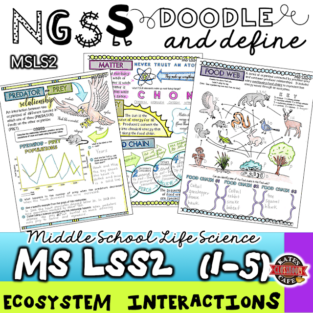 Doodle and Define for standard MSLS2