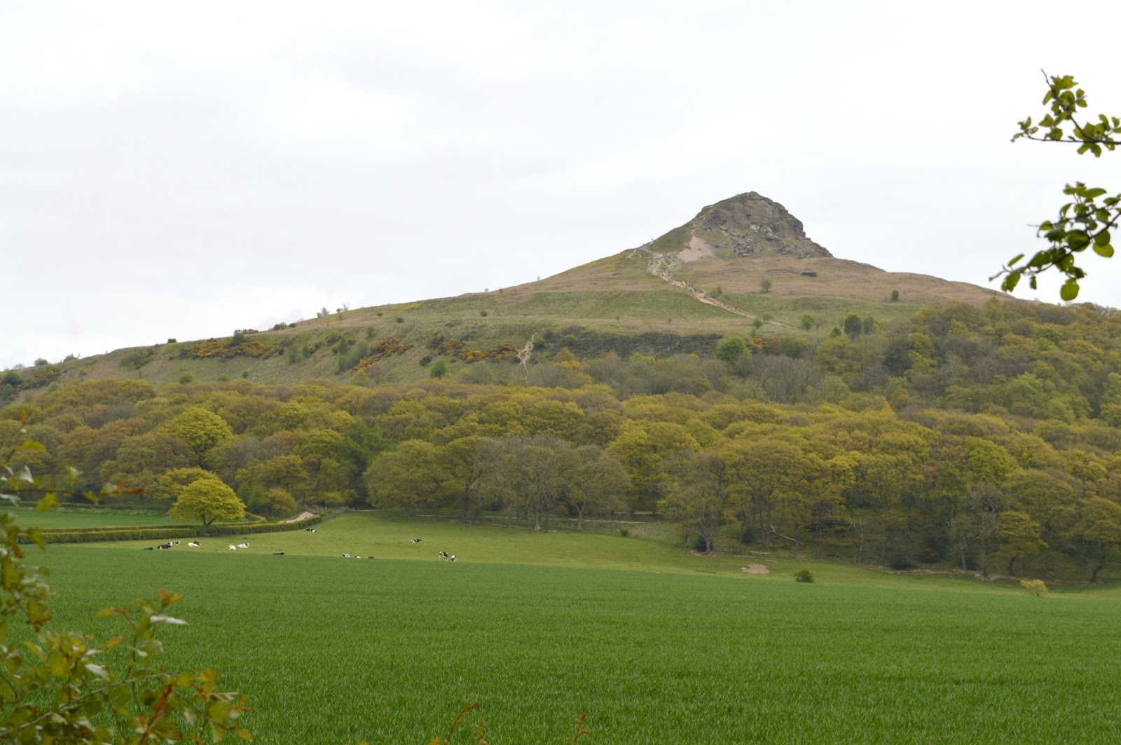 Climbing Roseberry Topping