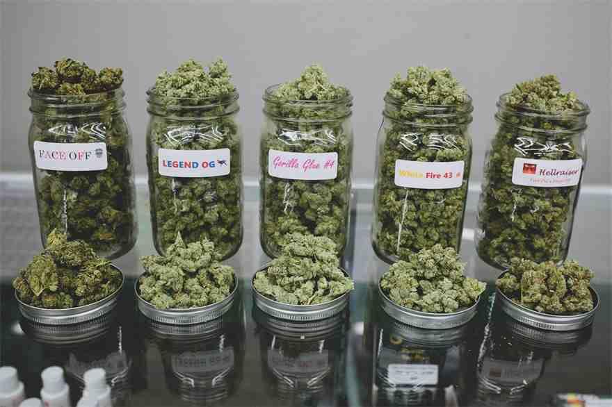 alle weed sorten