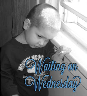 Waiting on Wednesday #3..Just a day late :)
