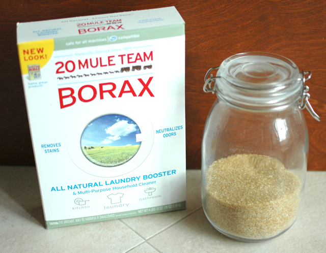 Recipe To Get Rid Of Ants Using Borax How Much Does It