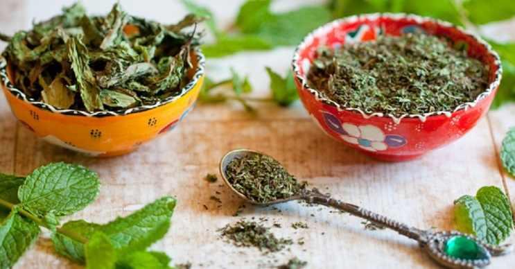 Kuru nane yaprağı ev temizlerken kullanılabilir.