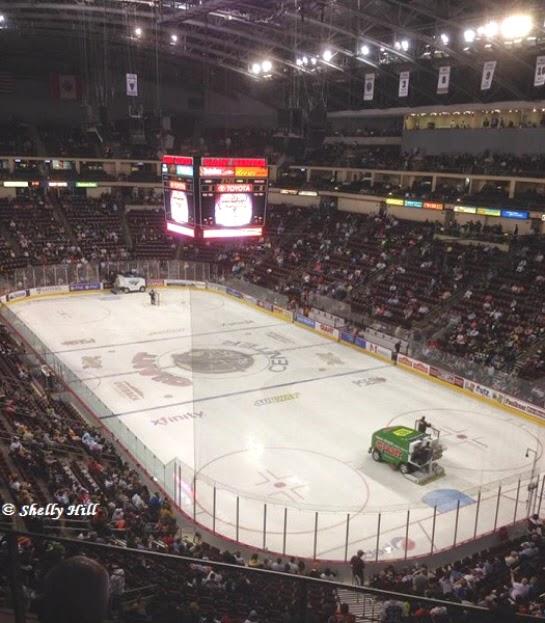 Hershey Bears Hockey Game
