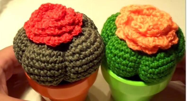 Patron Cactus Amigurumi Tejiendo Peru : anygurumi: CACTUSMANIA