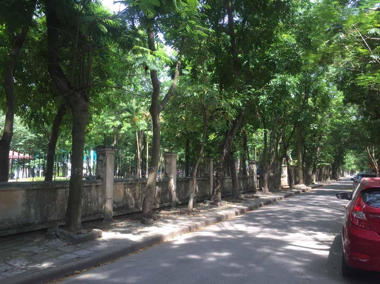 Một góc khu đô thị xanh Định Công
