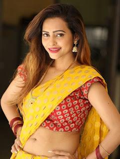 Geetha Shah Looks In Saree 12