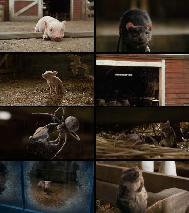 Charlottes Web 2006 Dual Audio Hindi 480p BluRay