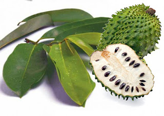 8 Benefits of Soursop Fruit for Natural Facial Masks - Healthy T1ps