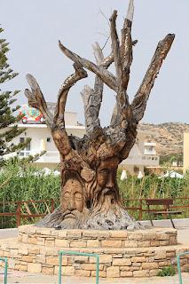 Drzewo oliwne w Matala