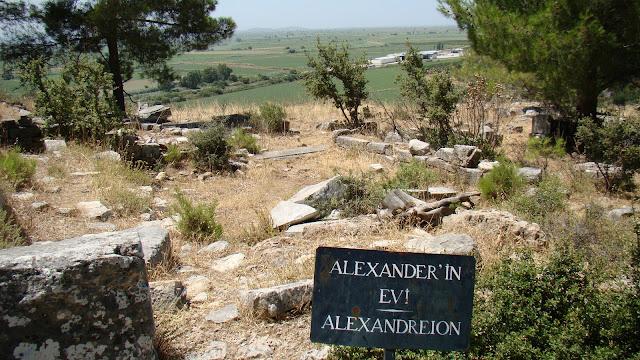 Willa Aleksandra Wielkiego