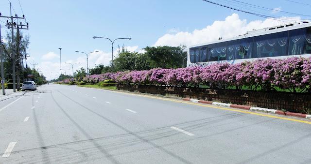 Pengalamanku Saat Jalan-jalan di Thailand