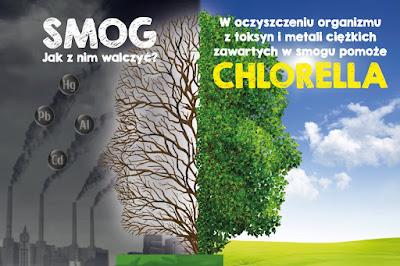 https://zielonekoktajle.blogspot.com/2017/11/chlorella-w-walce-ze-smogiem.html