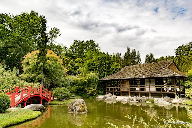 Jardín Japonés de Toulouse por El Guisante Verde Project