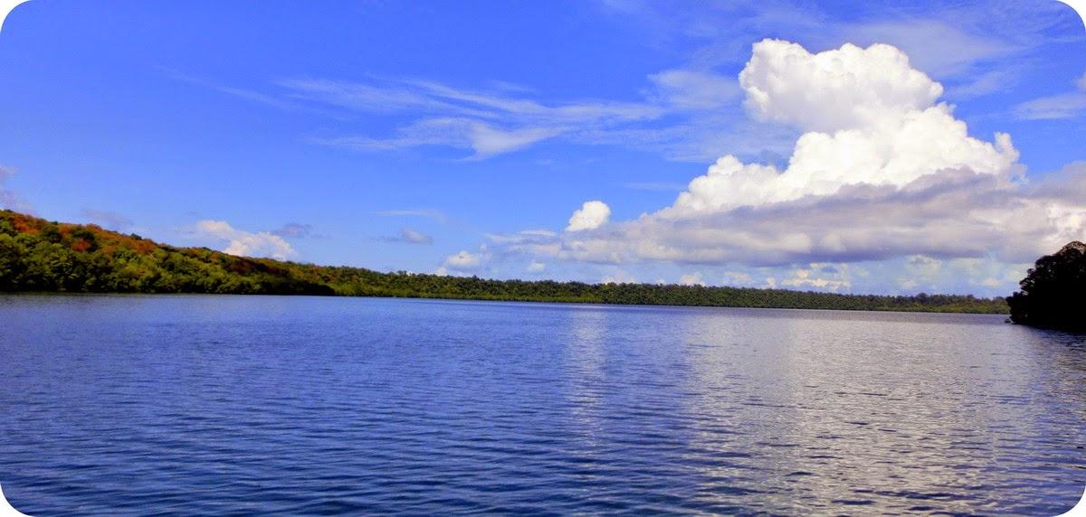Luas Danau Kakaban 390 Ha