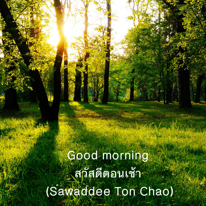 Hello In Thai Culture How To Say Good Morning In Thai
