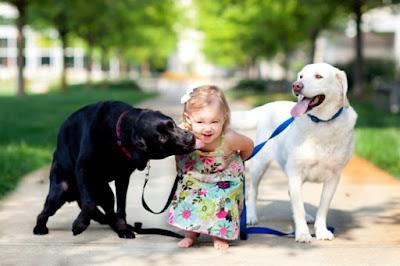 Perro labrador y niños