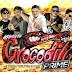 Cd  Gigante Crocodilo Prime ao Vivo em são Miguel do Guama 01-07-2018 - Dj Gordo e Dinho Pressão