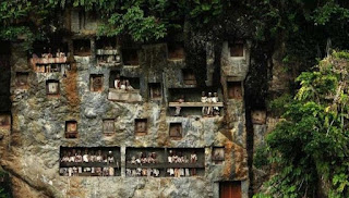 Tempat Wisata Lemo Toraja