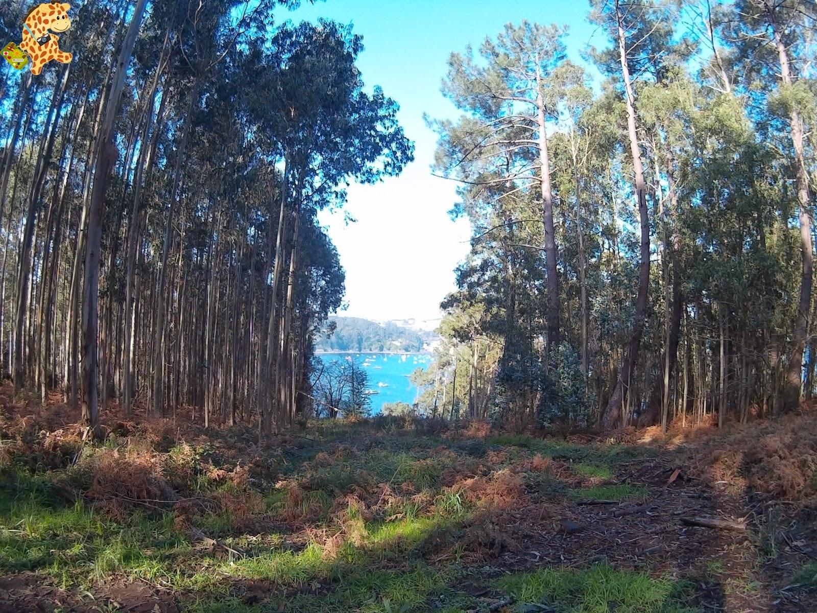 Ruta de las Algas. Ría de Ortigueira, A Coruña