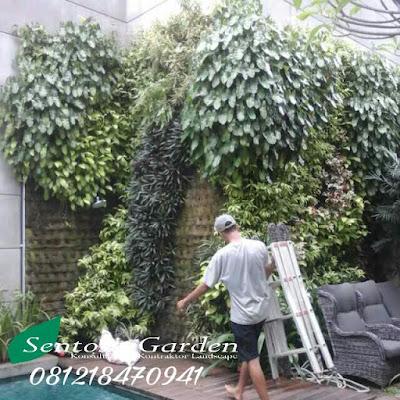 Harga Jasa Pembuatan Taman Minimalis / Vertikal Garden Per Meter