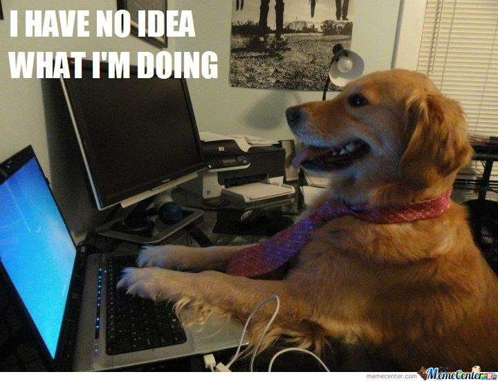 image of a dog blogging