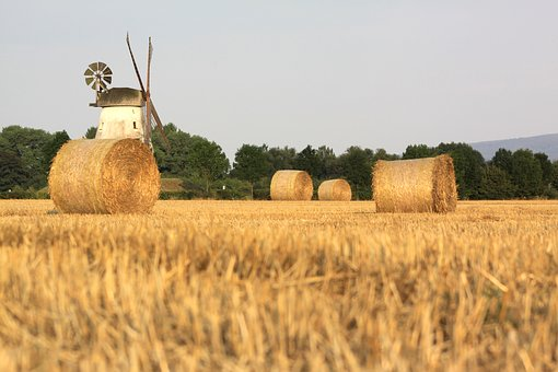 politik pertanian