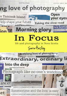 In Focus book by Sara Harley - newspaper columns published in the Chronicle Herald