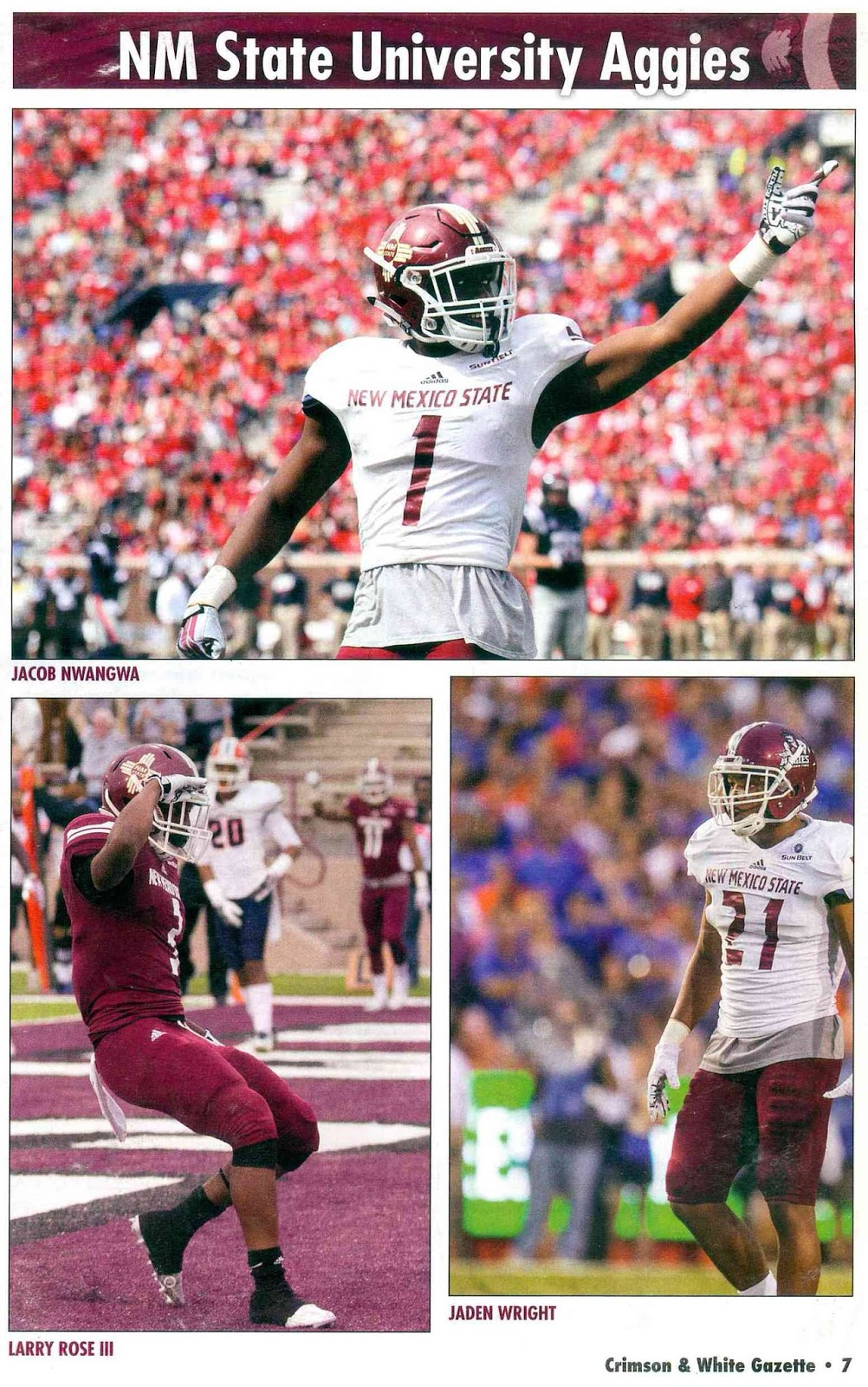 Just Denial And Hysteria: NMSU Aggies Vs UNM Lobos