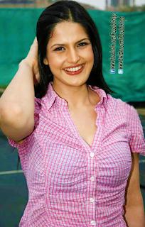 Zarine Khan Super Hot armpits