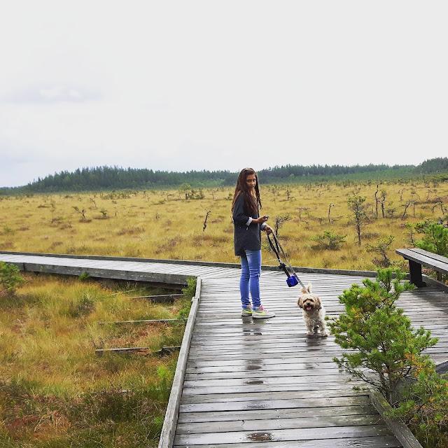 Wandern mit Kindern durchs schwedische Hochmoor