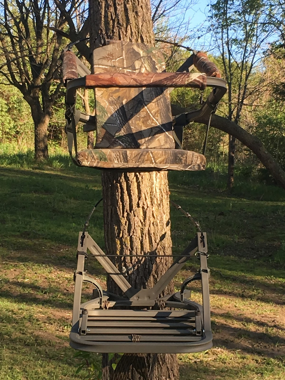 Average Midwest Outdoorsman Summit Viper Climbing Tree