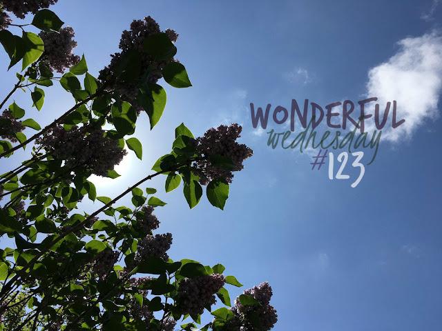 Wonderful Wednesday #123