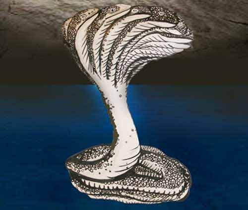Secret Behind Snake Head Image of Sage Patanjali