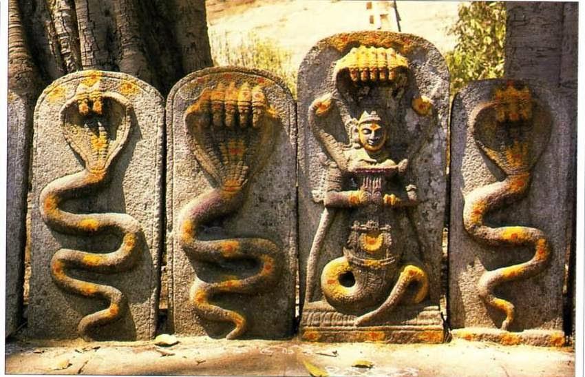 Snake (Naga) Story in Hindi